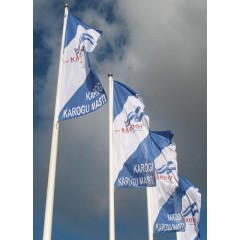 Companies and organizations flags